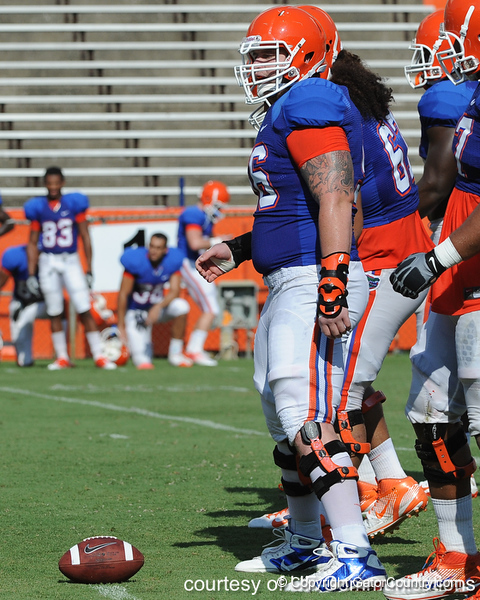 Florida redshirt senior center Dan Wenger lines up during the Gators' scrimmage on Monday, August 15, 2011 at Ben Hill Griffin Stadium in Gainesville, Fla. / photo courtesy of UF Communications