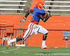 Florida redshirt senior running back/receiver Chris Rainey runs for a touchdown during the Gators' scrimmage on Monday, August 15, 2011 at Ben Hill Griffin Stadium in Gainesville, Fla. / photo courtesy of UF Communications