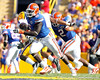 Florida redshirt senior defensive tackle Jaye Howard chases the ballcarrier during the second quarter of the Gators' 41-11 loss to the LSU Tigers on Saturday, October 8, 2011 at Tiger Stadium in Baton Rouge, La. / Gator Country photo by Tim Casey