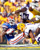 Florida junior running back Mike Gillislee gets tackled after a 12-yard gain during the second quarter of the Gators' 41-11 loss to the LSU Tigers on Saturday, October 8, 2011 at Tiger Stadium in Baton Rouge, La. / Gator Country photo by Tim Casey