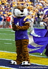 LSU mascot Mike the Tiger before the Gators' 41-11 loss to the LSU Tigers on Saturday, October 8, 2011 at Tiger Stadium in Baton Rouge, La. / Gator Country photo by Rob Foldy