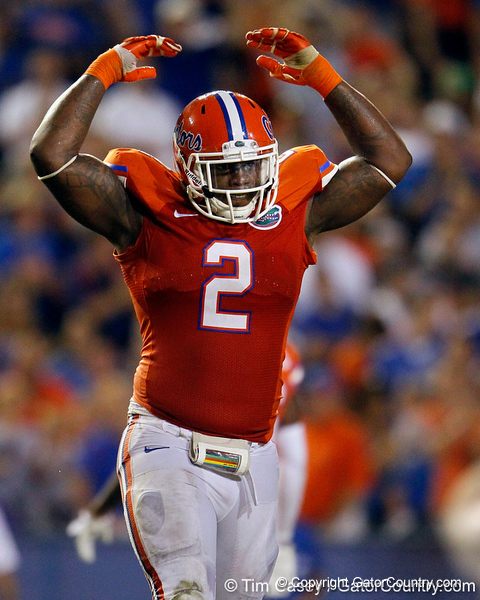 Florida sophomore defensive tackle Dominique Easley pumps up the crowd during the third quarter of the Gators' 41-3 win against the FAU Owls on Saturday, September 3, 2011 at Ben Hill Griffin Stadium in Gainesville, Fla. / Gator Country photo by Tim Casey
