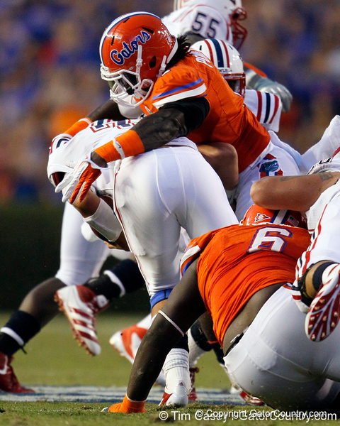 Florida sophomore linebacker/defensive end Ronald Powell sacks FAU quarterback David Kooi at the 32-yard line for a seven-yard loss during the second quarter of the Gators' 41-3 win against the FAU Owls on Saturday, September 3, 2011 at Ben Hill Griffin Stadium in Gainesville, Fla. / Gator Country photo by Tim Casey