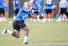 Florida redshirt junior receiver Frankie Hammond, Jr. catches a pass during the Gators' practice on Wednesday, March 16, 2011 at the Sanders football practice fields. / photo courtesy of UF Communications
