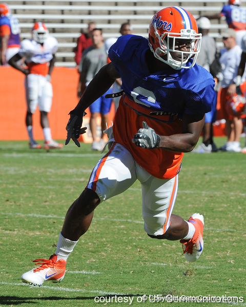 Florida redshirt senior receiver Deonte Thompson runs a pass route during the Gators' practice on Wednesday, April 6, 2011 at Ben Hill Griffin Stadium. / photo courtesy of UF Communications