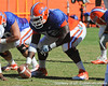 Florida redshirt sophomore guard Jonotthan Harrison snaps the ball during the Gators' practice on Wednesday, April 6, 2011 at Ben Hill Griffin Stadium. / photo courtesy of UF Communications