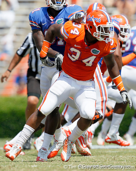 Florida redshirt junior defensive end Lerentee McCray chases the ball during the Gators' spring football game on Saturday, April 9, 2011 at Ben Hill Griffin Stadium in Gainesville, Fla. / Gator Country photo by Tim Casey