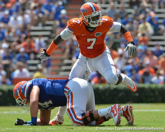 "UF ""Buck"" linebacker Ronald Powell steps over tackle Kyle Koehne during the 2011 Orange and Blue Debut at Ben Hill Griffin Stadium on Saturday, April 9, 2011. / Gator Country photo by Harrison Diamond"
