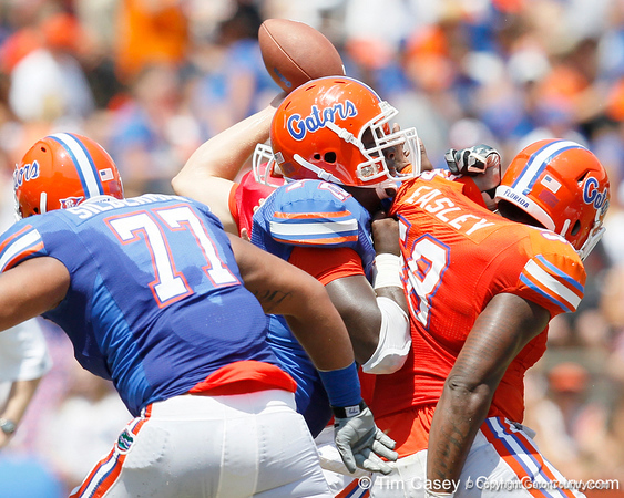 Florida redshirt sophomore guard Jonotthan Harrison blocks sophomore defensive tackle Dominique Easley during the Gators' spring football game on Saturday, April 9, 2011 at Ben Hill Griffin Stadium in Gainesville, Fla. / Gator Country photo by Tim Casey