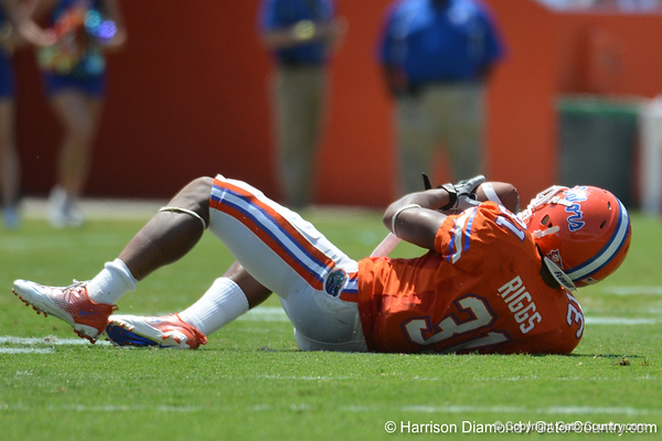 UF cornerback Cody Riggs makes a diving interception during the 2011 Orange and Blue Debut at Ben Hill Griffin Stadium on Saturday, April 9, 2011. / Gator Country photo by Harrison Diamond