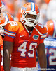 Florida sophomore linebacker Darrin Kitchens lines up during the Gators' spring football game on Saturday, April 9, 2011 at Ben Hill Griffin Stadium in Gainesville, Fla. / Gator Country photo by Tim Casey