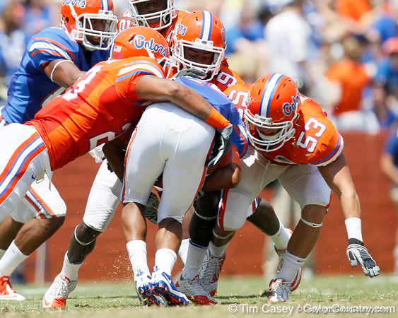 Florida redshirt freshman linebacker Chris Martin, sophomore safety Joshua Shaw and redshirt junior linebacker Scott Peek tackle sophomore running back Deandre Goins during the Gators' spring football game on Saturday, April 9, 2011 at Ben Hill Griffin Stadium in Gainesville, Fla. / Gator Country photo by Tim Casey