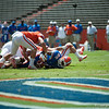 Florida red shirt junior Stephen Alli runs, fumbles and recovers own fumble during the Gators' Orange and Blue Debut  on Saturday,  April 7, 2012 at the Ben Hill Griffin Stadium in Gainesville, Fla. / Gator Country photo by Saj Guevara