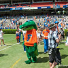 Florida crowd cheering during the Gators' Orange and Blue Debut  on Saturday,  April 7, 2012 at the Ben Hill Griffin Stadium in Gainesville, Fla. / Gator Country photo by Saj Guevara