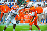 DB Dominique Easley tries to get to Miami QB Stephen Morris before he throws the ball.  Gators vs Miami.  9-07-13.