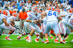 QB Jeff Driskel prepares to hand off the ball.  Gators vs Miami.  9-07-13.