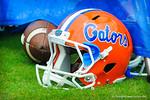 Go Gators!  Gators vs Miami.  9-07-13.