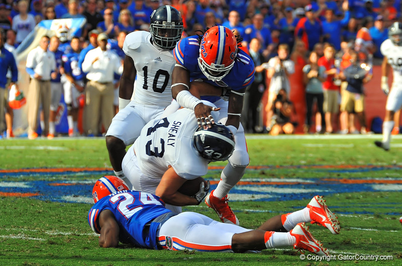 Georgia Southern LB Michael Shealy after picking up the lose ball is sandwiched between Florida Gators Neiron Ball (11) and Brian Poole (24).  Florida Gators vs Georgia Southern Eagles.  Gainesville, FL.  November 23, 2013.