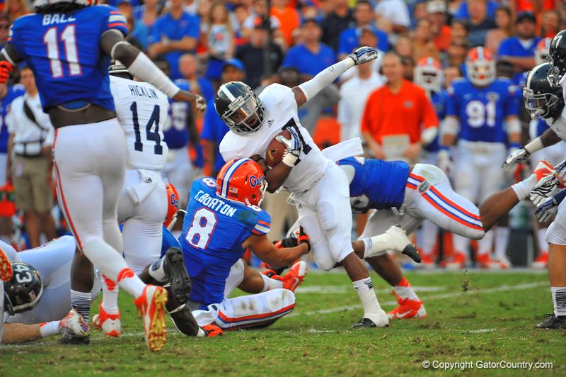 Florida Gators vs Georgia Southern Eagles.  Gainesville, FL.  November 23, 2013.