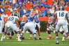 Florida Gator QB Skyler Mornhinweg lines up under center Jonatthan Harrison for the first snap of the game.  Florida Gators vs Georgia Southern Eagles.  Gainesville, FL.  November 23, 2013.