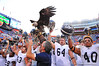 The Georgia Southern players celebrate lifting their eagle into the air after their win against the Florida Gators.  Florida Gators vs Georgia Southern Eagles.  Gainesville, FL.  November 23, 2013.