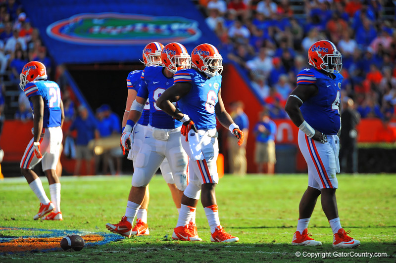 The Florida Gator defense looks to the sideline for the play call in the second quarter.  Florida Gators vs Georgia Southern Eagles.  Gainesville, FL.  November 23, 2013.
