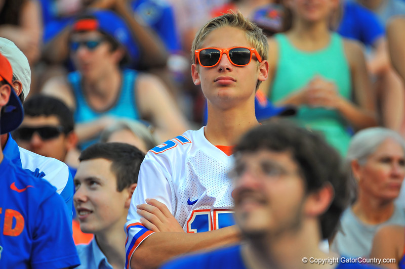 A Florida Gator fan not looking to happy about what is occuring on the field in the third quarter.  Florida Gators vs Georgia Southern Eagles.  Gainesville, FL.  November 23, 2013.