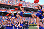The Florida Gator Cheerleaders cheer on for the fans.  Florida Gators vs Vanderbilt Commodores.  Gainesville, FL.  November 9, 2013.