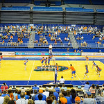 The gator womens volleyball team put on an exhibition scrimmage during the Gator Fan Day.  Stephen C. O'Connell Center.  August 17th, 2013