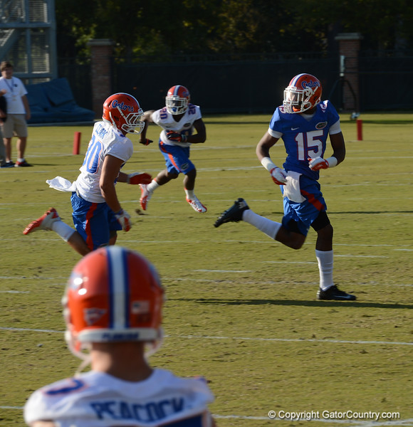 Purifoy (15) gets deep