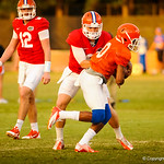 QB Jeff Driskel hands off to Valdez Showers. Gators Practice 8-15-13.