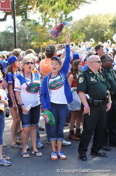 A Florida Gator fan cheers on as the football arrives.  Florida Gators vs Georgia Southern Eagles.  Gainesville, FL.  November 23, 2013.