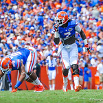 LB Ronald Powell eyes the play.  Gators vs Toledo.  8-31-13.