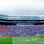 A storm was in the forcast for the football game but it was a beautiful day for a gator game.  Gators vs Toledo.  8-31-13.