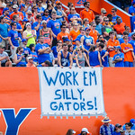 Fans show their support for the gators.  Gators vs Toledo.  8-31-13.