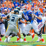 QB Jeff Driskel eyes a reciever downfield.  Gators vs Toledo.  8-31-13.