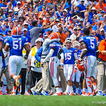 Gators congratulate Hargreaves after his interception.  Gators vs Toledo.  8-31-13.