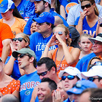 Gator fans cheer on their team.  Gators vs Toledo.  8-31-13.