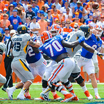 QB Jeff Driskel throws the ball.  Gators vs Toledo.  8-31-13.'
