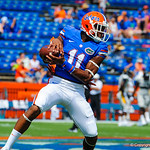 WR Demarcus Robinson catches a ball during warm ups.  Gators vs Toledo.  8-31-13.