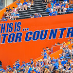 This is Gator Country!  Gators vs Toledo.  8-31-13.