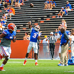 QB Tyler Murphy warming up.  Gators vs Toledo.  8-31-13.