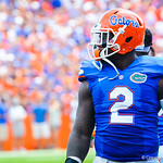 DL Dominique Easley eyes the field.  Gators vs Toledo.  8-31-13.