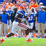 RB Kelvin Taylor rushes downfield.  Gators vs Toledo.  8-31-13.