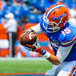 WR Ryan Parrish catches a ball during wearm ups.  Gators vs Toledo.  8-31-13.