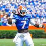 LB Ronald Powell celebrates the gator defense stop.  Gators vs Toledo.  8-31-13.