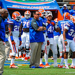 Gator coaches and players warm up for Toledo.  Gators vs Toledo.  8-31-13.