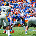 LB Neiron Ball eyes the Toledo QB.  Gators vs Toledo.  8-31-13.