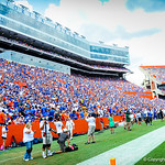 It was a gorgeous day in Ben Hill Griffin Stadium for the Gator-Toledo football game.  Gators vs Toledo.  8-31-13.