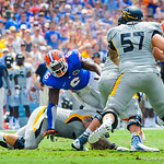 Dl Dominique Easley gets hit low while trying to rush in on the play.  Gators vs Toledo.  8-31-13.